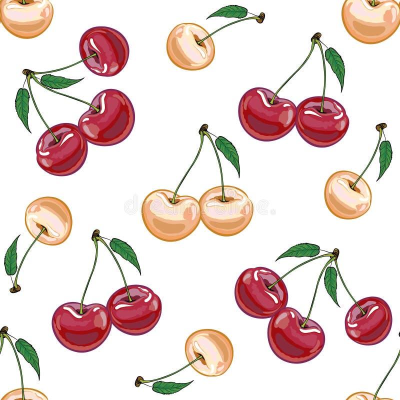 Безшовная текстура бежевой и красной вишни на белой предпосылке иллюстрация вектора