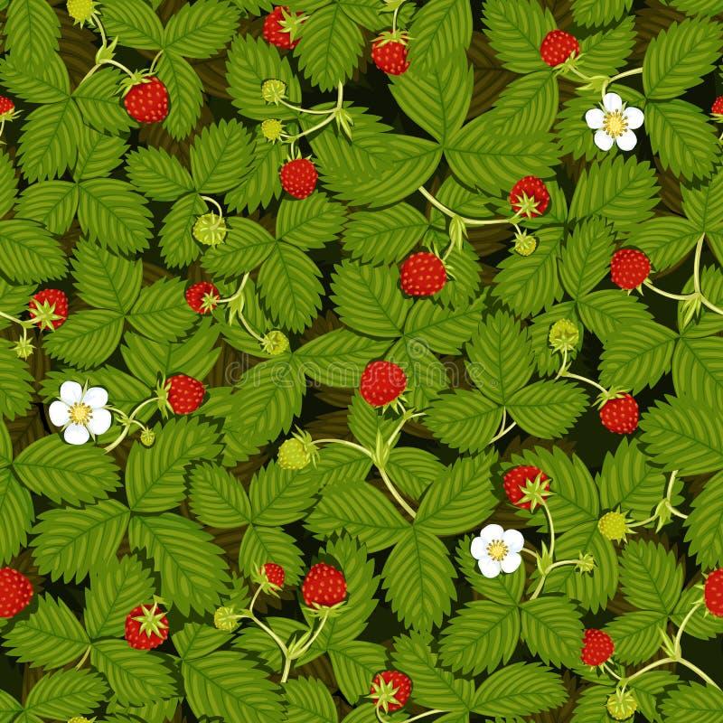 Безшовная текстура вектора луга клубники с ягодами листьев, цветков, зрелых и зеленых клубники иллюстрация вектора