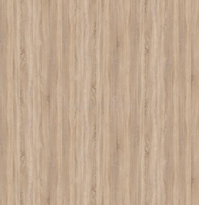 Безшовная текстура дуба Sonoma слябов макулатурного картона светлого стоковая фотография rf