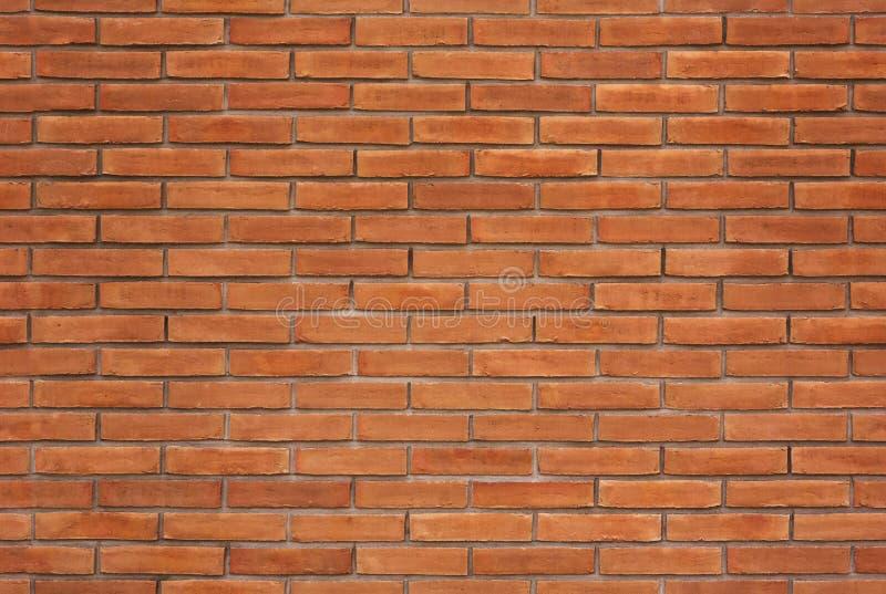Безшовная текстура кирпичной стены стоковое изображение rf