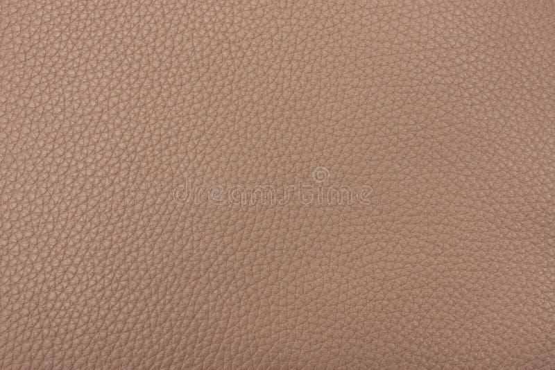 безшовная текстура кожи tileable стоковые фото