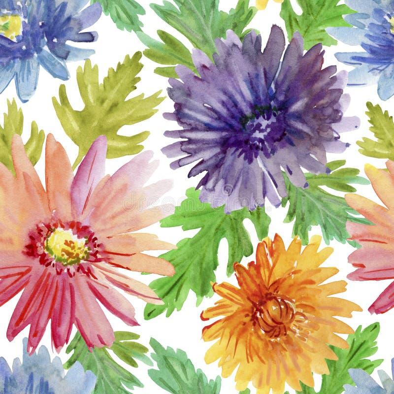 безшовная текстура Цветки весны акварели Хризантема бесплатная иллюстрация