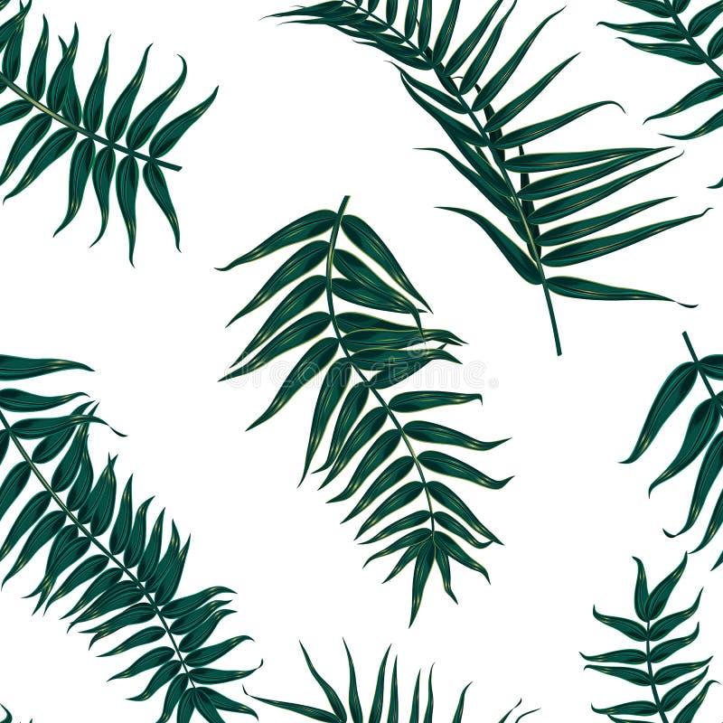 Безшовная тропическая картина, экзотическая предпосылка с ветвями пальмы, листьями, лист, листьями ладони Бесконечная текстура иллюстрация штока