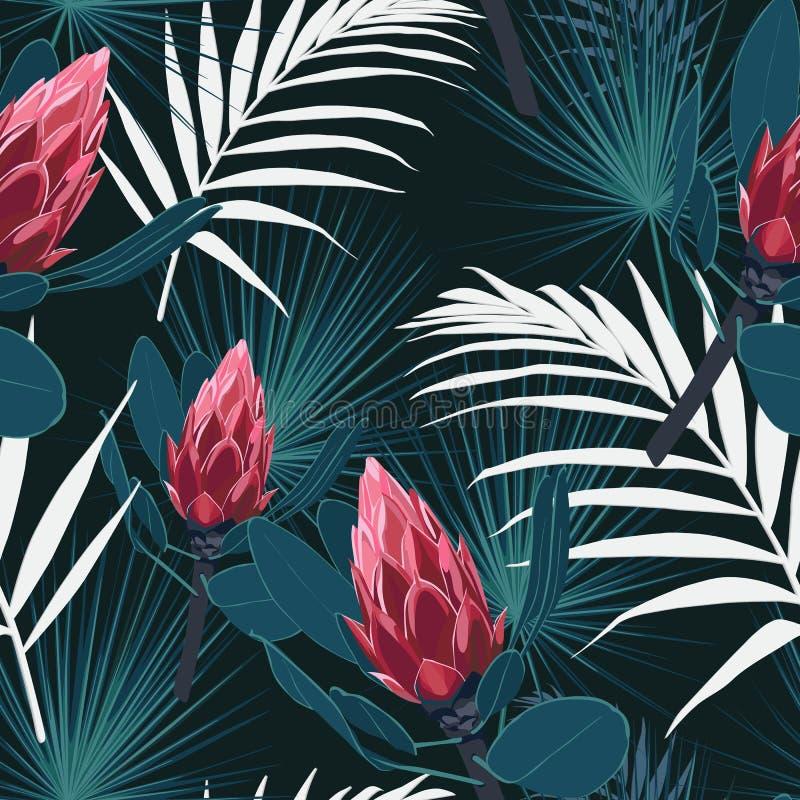 Безшовная тропическая картина, яркая троповая листва, с листьями ладони, красный цветок protea в цветени иллюстрация штока