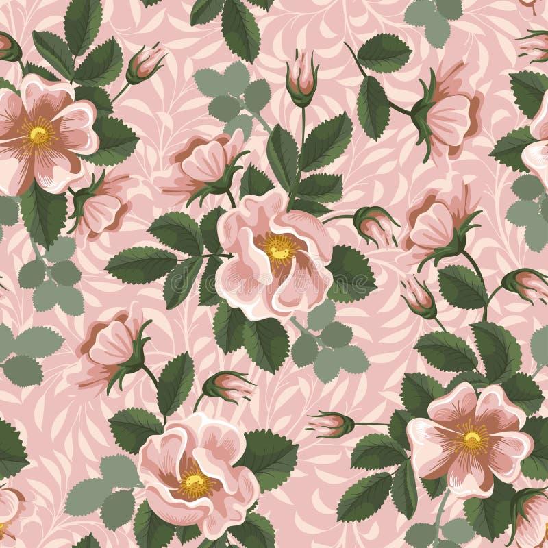 Безшовная флористическая предпосылка иллюстрация штока