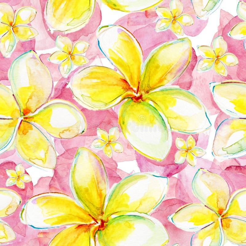 Безшовная экзотическая картина с plumeria цветков иллюстрация штока