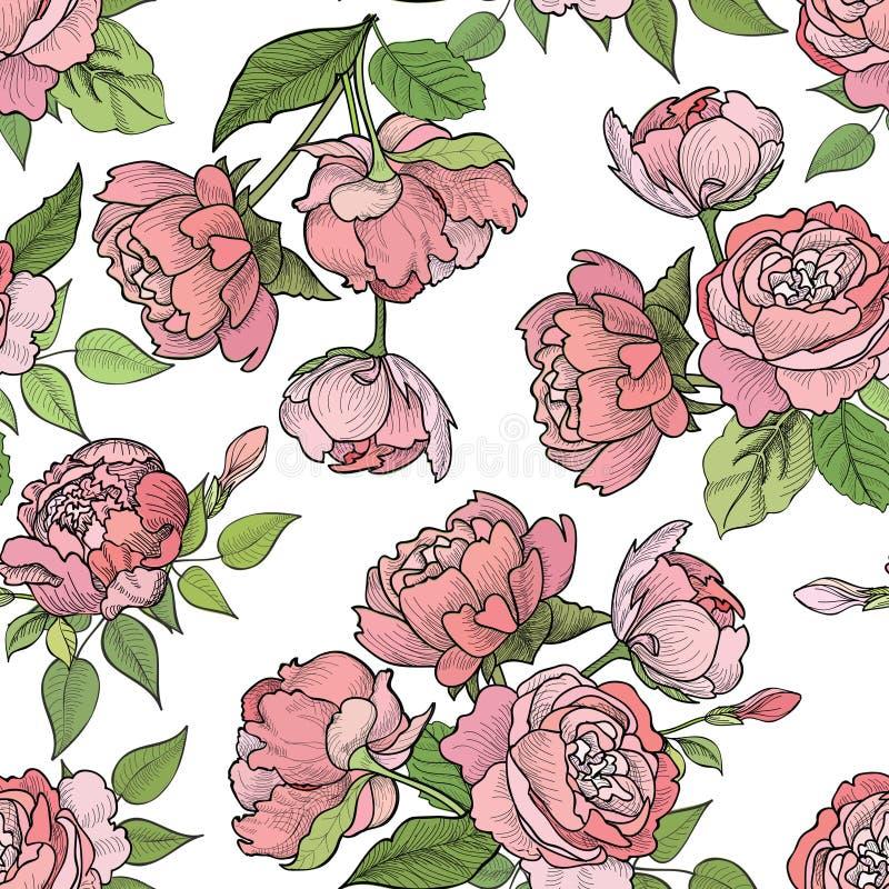 безшовное предпосылки флористическое диаграмма малое смычков букетов картины цветка безшовное иллюстрация вектора
