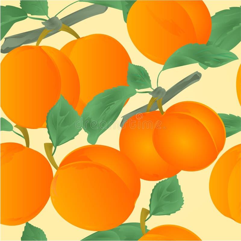 Безшовные абрикосы текстуры с плодоовощ десерта листьев vector иллюстрация editable иллюстрация штока