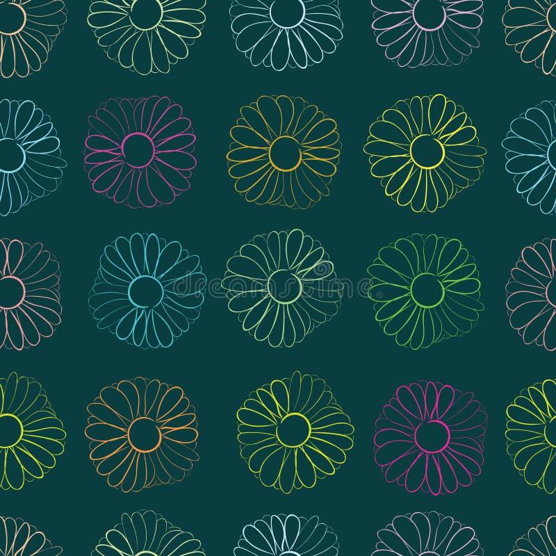 Безшовные контуры camomiles цвета иллюстрация вектора