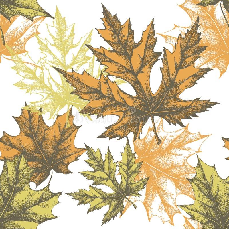 Безшовные обои с кленовым листом, рук-чертеж иллюстрация вектора