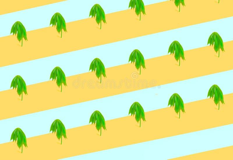Безшовные тропические зеленые листья в форме пальмы Ультрамодная минимальная концепция лета природы стоковые изображения