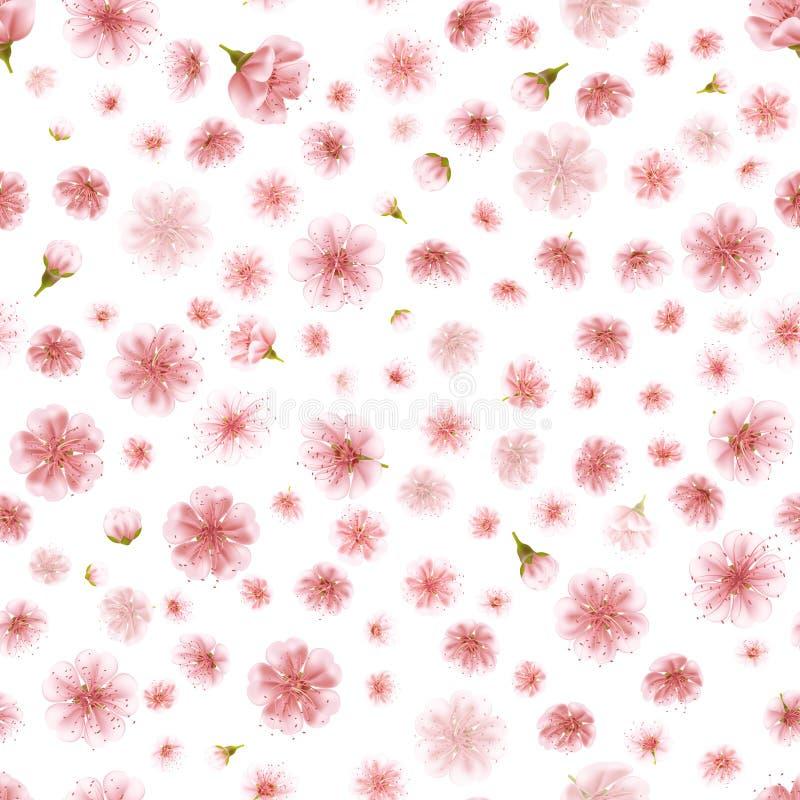 Безшовные цветки Сакуры изолированные на белизне 10 eps иллюстрация штока