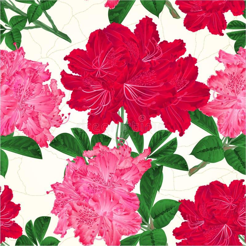 Безшовные цветки текстуры красные и розовые отказы кустарника горы хворостины рододендронов в векторе притяжки руки фарфора винта бесплатная иллюстрация