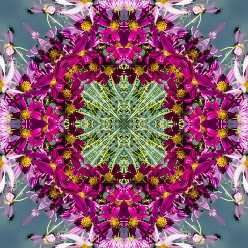 Безшовный геометрический цветочный узор розовых wildflowers стоковое изображение