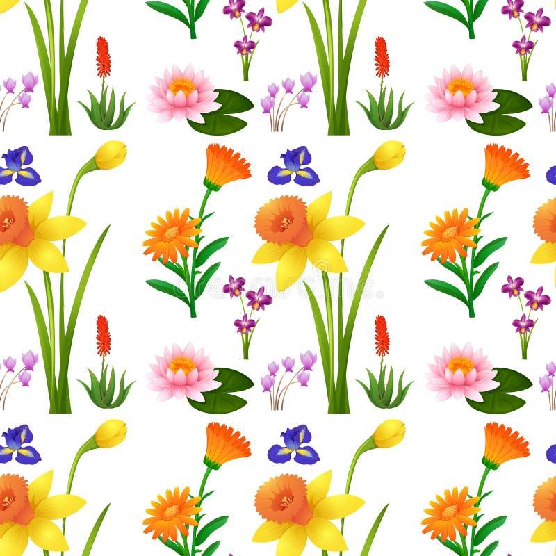 Безшовный дизайн предпосылки с полевыми цветками бесплатная иллюстрация