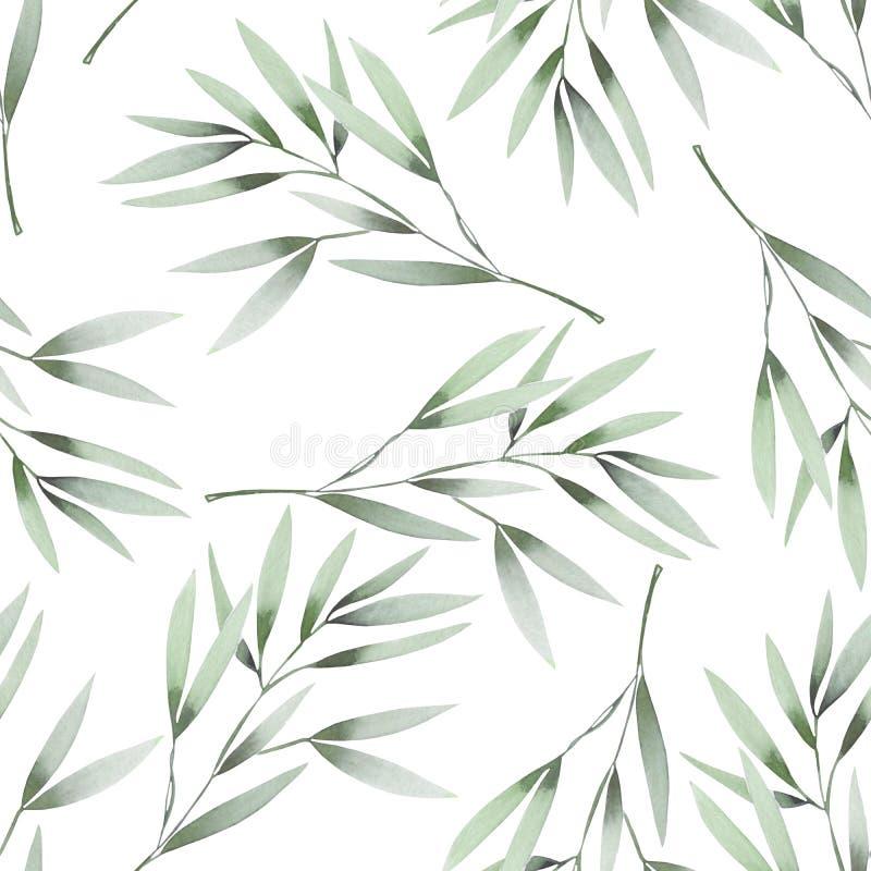 Безшовный цветочный узор с зеленым цветом акварели выходит на ветви иллюстрация штока