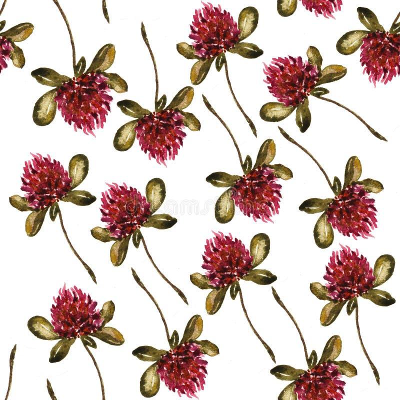Безшовный цветочный узор с клевером, иллюстрацией акварели стоковые фото