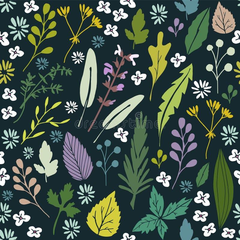 Безшовный цветочный узор с различными травами, листьями и цветками, иллюстрация вектора