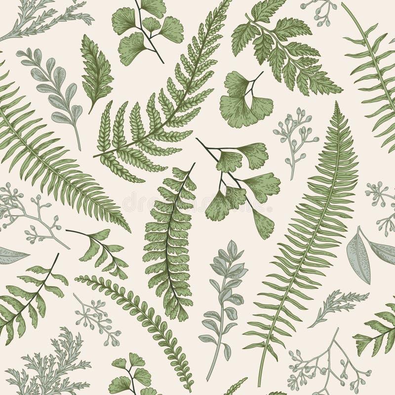 Безшовный цветочный узор с травами и листьями стоковое фото