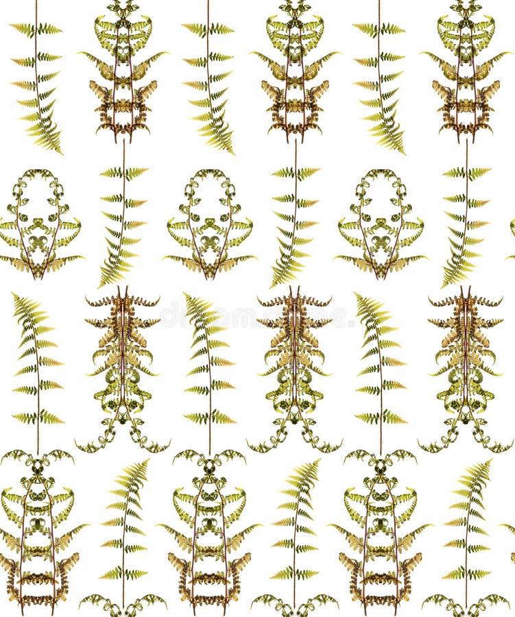 Безшовный цветочный узор с травами иллюстрация вектора