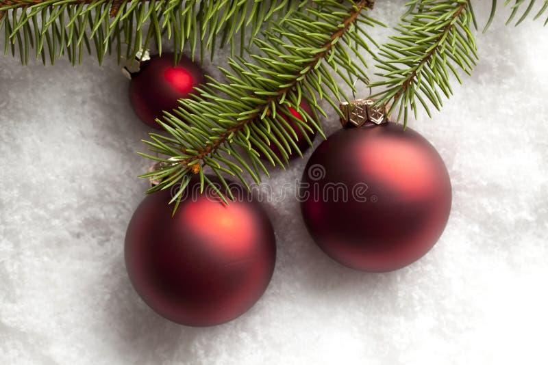 Безделушки рождества и ветвь дерева на снеге стоковое изображение
