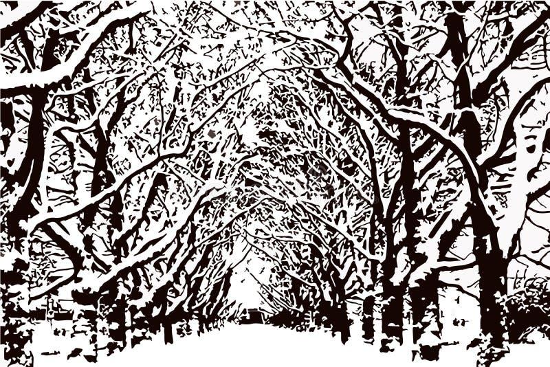 Безлистные деревья с снегом на ветвях, вектором парка бесплатная иллюстрация