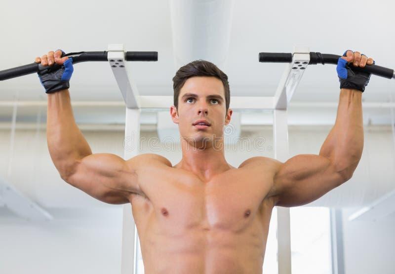 Без рубашки построитель мужского тела делая тягу поднимает стоковая фотография