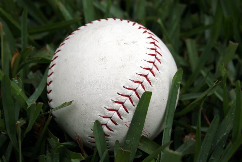 бейсбол 2 стоковая фотография rf