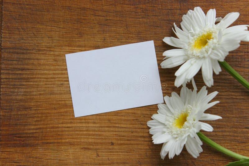 Белая бумага и маргаритка цветков на деревянной предпосылке стоковые изображения