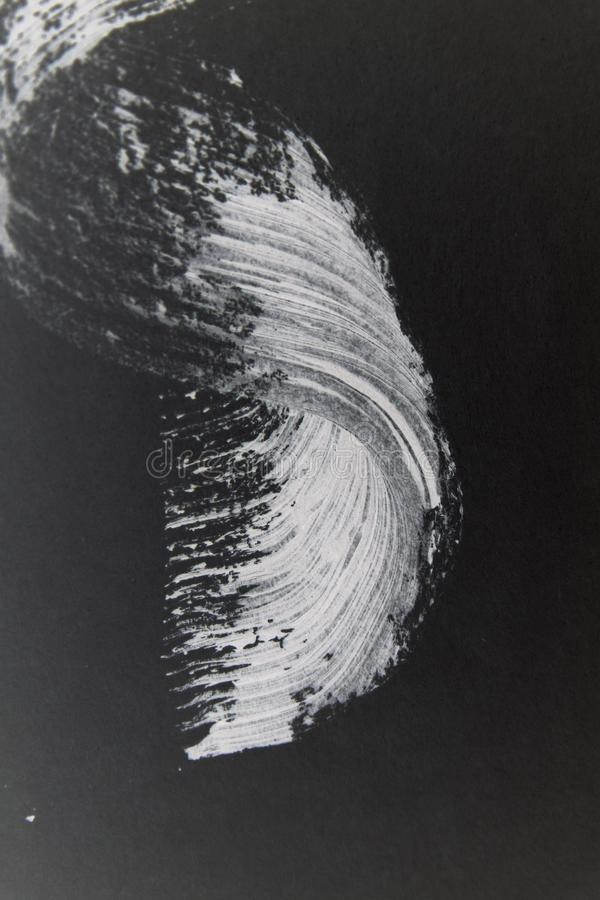 Белая волна mascara стоковые изображения