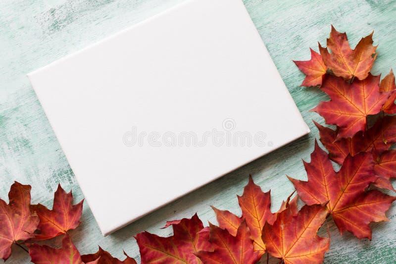 Белая доска холста Скопируйте космос для дизайна белизна осени изолированная принципиальной схемой стоковая фотография rf