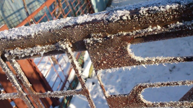 Белая изморозь стоковое фото rf