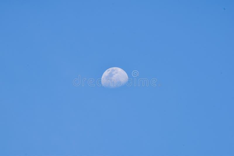 Белая луна в голубом небе перед заходом солнца стоковые фотографии rf