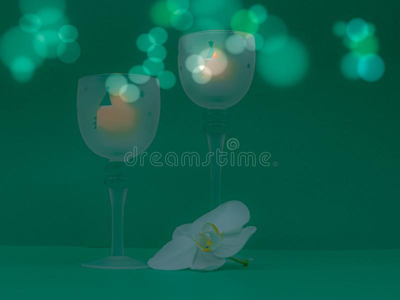Белая орхидея, рождественские вегетарианские огни и огни стоковое изображение