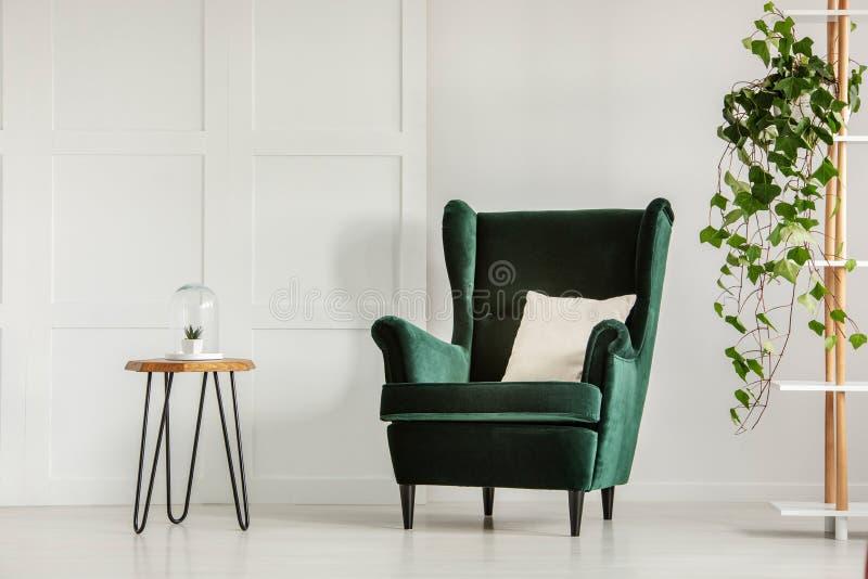 Белая подушка на изумрудно-зеленом кресле в современном интерьере живущей комнаты с деревянными журнальным столом и плющом в баке стоковое фото