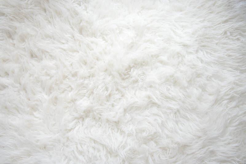 Белая пушистая текстура стоковая фотография rf
