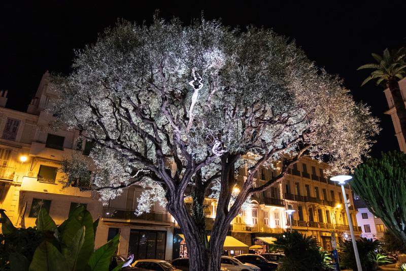 Белая рождественская елка на улицах Канн стоковые фотографии rf