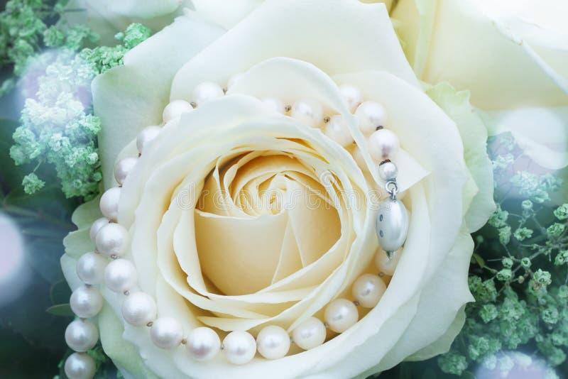 Белая роза с ожерельем жемчуга стоковое изображение rf