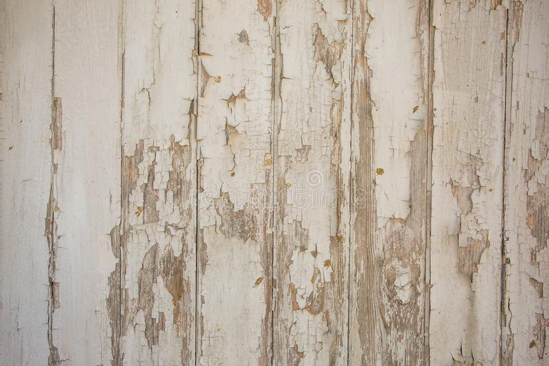 Белая/серая деревянная предпосылка текстуры с естественными картинами стоковые фотографии rf