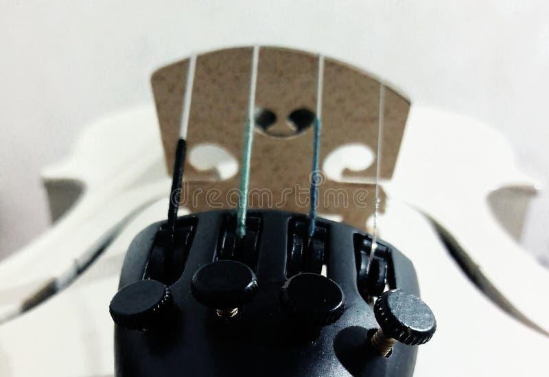 Белая скрипка стоковое изображение rf