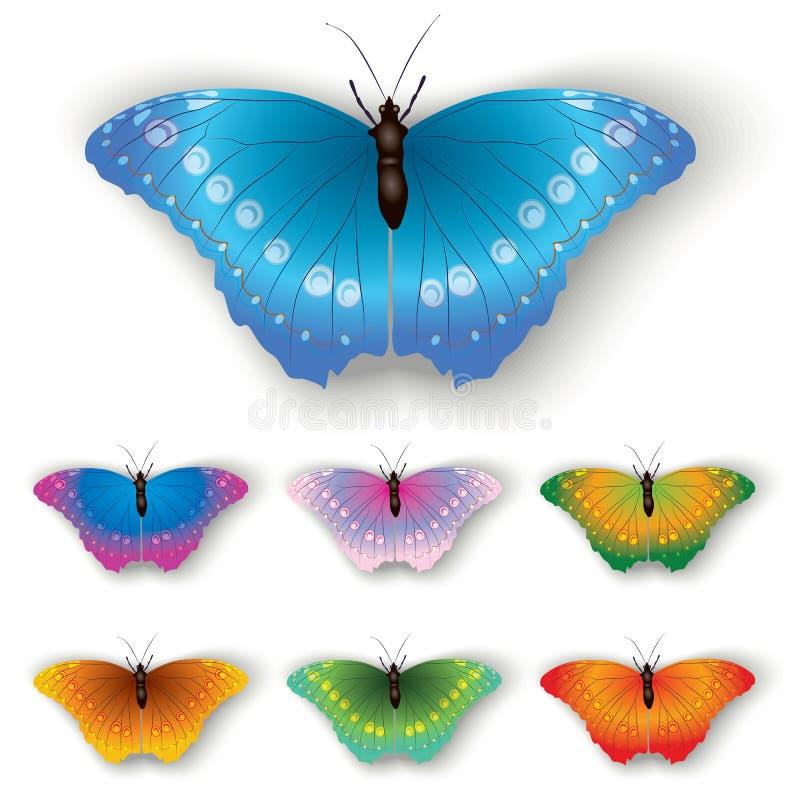 белизна бабочки изолированная цветом бесплатная иллюстрация