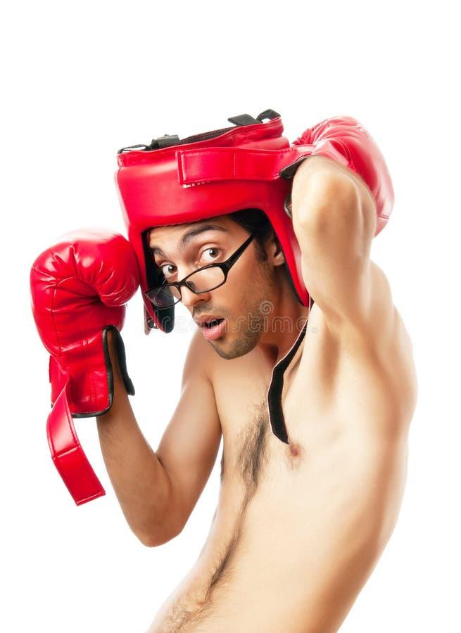 белизна боксера смешная стоковая фотография