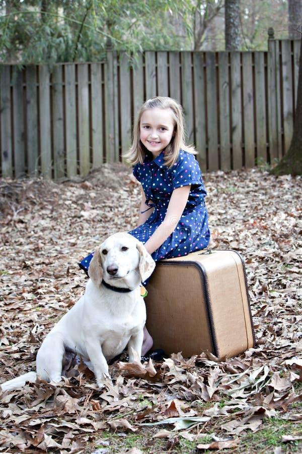 белизна девушки собаки немного outdoors сь стоковые изображения rf