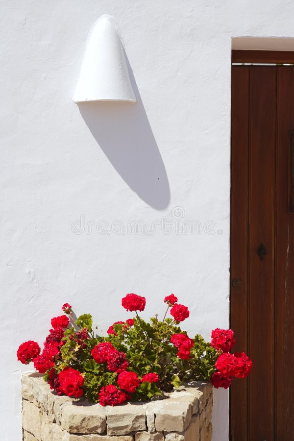 белизна домов гераниумов среднеземноморская красная стоковое изображение rf