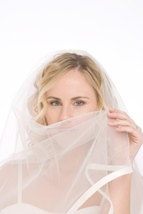 белизна изолированная невестой стоковая фотография rf
