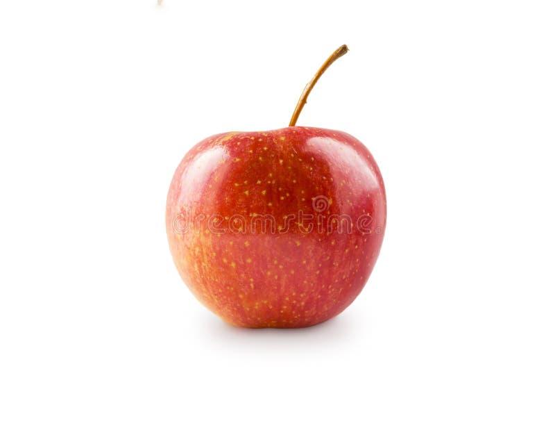 белизна изолированная яблоком красная Свежее красное яблоко на белой предпосылке Яблоко с космосом экземпляра стоковые изображения