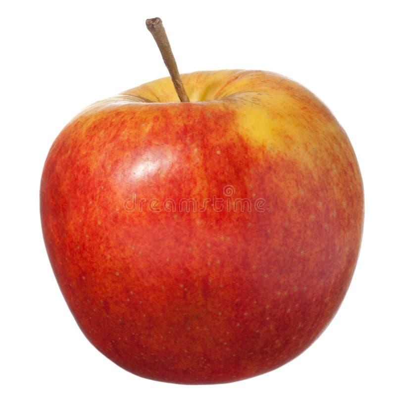 белизна изолированная яблоком красная стоковые изображения rf