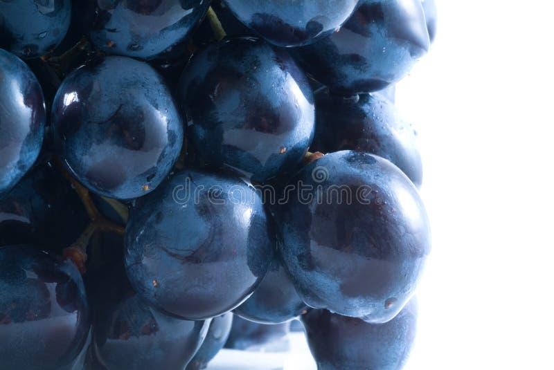 белизна изоляции виноградин стоковое изображение rf