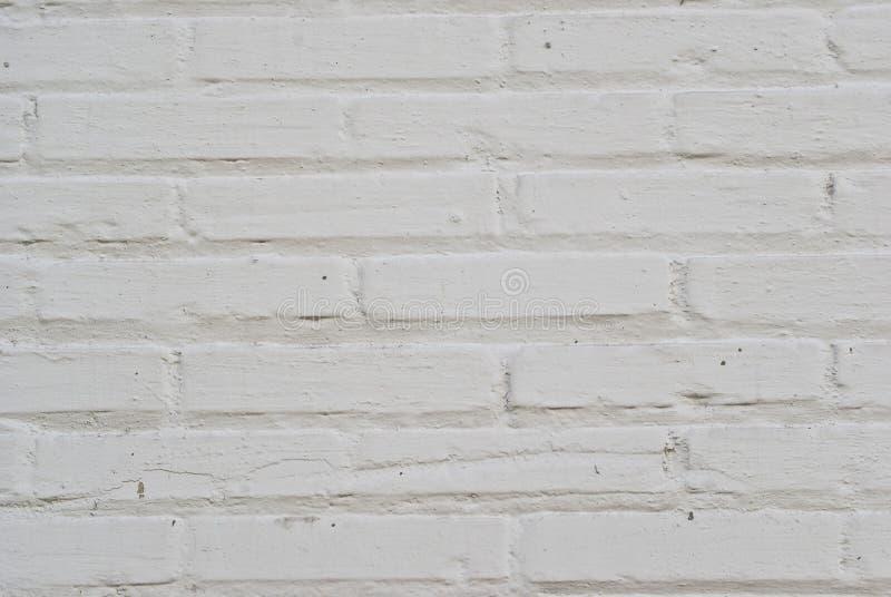 белизна кирпичной стены стоковое фото