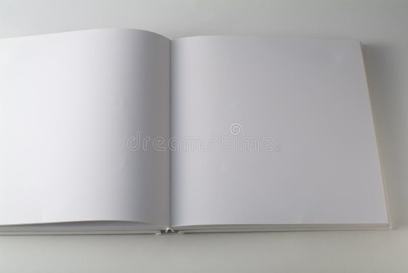 белизна книги стоковая фотография